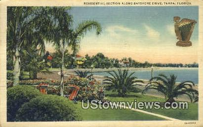 Residential Section, Bayshore Drive - Tampa, Florida FL Postcard