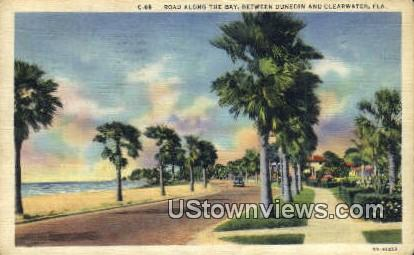 Road along the Bay - Clearwater, Florida FL Postcard