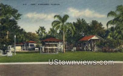 Zoo - Kissimmee, Florida FL Postcard