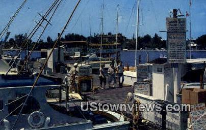 City Pier & Boats - Sarasota, Florida FL Postcard