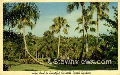Sarasota Jungle Gardens - Florida FL Postcard