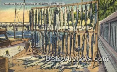 Two Hour Catch, Kingfish - Sarasota, Florida FL Postcard