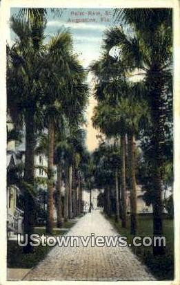 Palm Row - St Augustine, Florida FL Postcard
