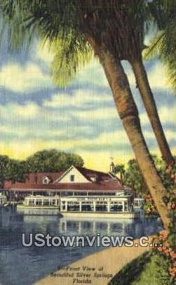 Silver Springs, FL       ;       Silver Springs, Florida Postcard