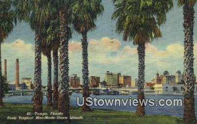 Tropical Man Made Davis Island - Tampa, Florida FL Postcard