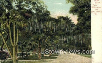 Triple Royal Palm Ridgewood Ave - Daytona, Florida FL Postcard