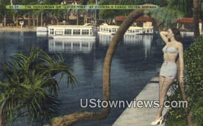 Silver Springs, Florida      ;            Silver Springs, FL Postcard
