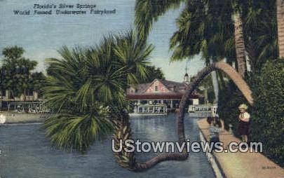 Underwater Fairyland - Silver Springs, Florida FL Postcard