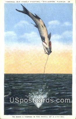 Hooked - Bradenton, Florida FL Postcard