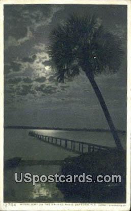 Halifax Fiver - Daytona, Florida FL Postcard