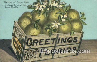 Grape Fruit - Greetings from, Florida FL Postcard
