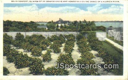 Solid Comfort - Florida River Postcards, Florida FL Postcard