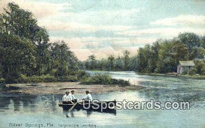 Turpentine Landing - Silver Springs, Florida FL Postcard