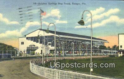 Sulphur Springs Dock Track - Tampa, Florida FL Postcard