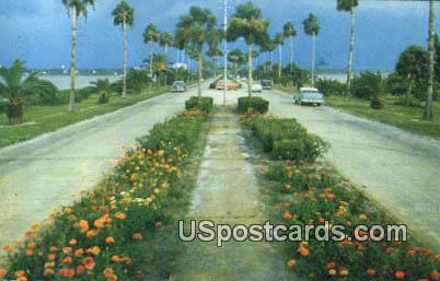 Clearwater - Clearwater Beach, Florida FL Postcard