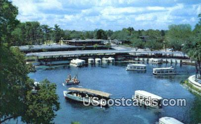 Glass Bottom Boat - Silver Springs, Florida FL Postcard