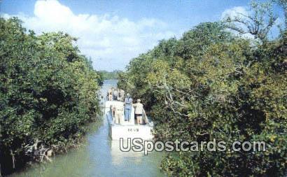 Everglades, Florida Postcard     ;     Everglades, FL