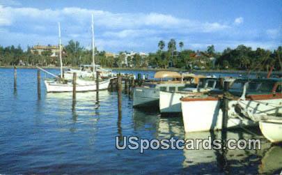 Sarasota, Florida Postcard     ;     Sarasota, FL