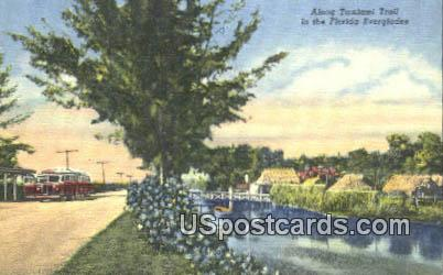 Ttamiami Trail - Everglades, Florida FL Postcard