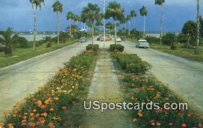 Flowerline Causeway - Clearwater Beach, Florida FL Postcard
