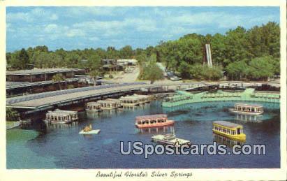 Silver Springs, Florida Postcard     ;     Silver Springs, FL