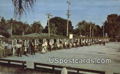 Shuffleboard - Hollywood, Florida FL Postcard