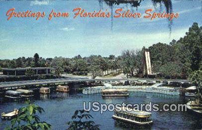 Aquatorium - Silver Springs, Florida FL Postcard
