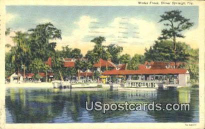 Water Front - Silver Springs, Florida FL Postcard