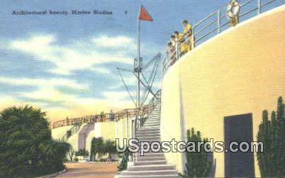 Marineland, FL Postcard     ;     Marineland, Florida
