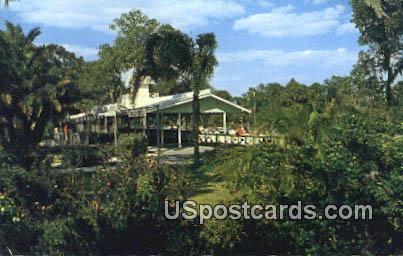 Tampa's Fairyland Railroad - Florida FL Postcard