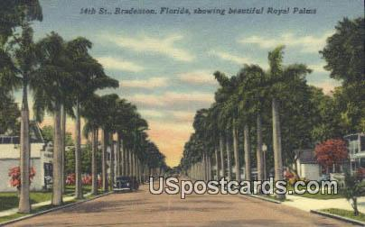 Royal Palms - Bradenton, Florida FL Postcard