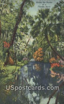 Florida River, FL Postcard     ;     Florida River, Florida - Florida River Postcards