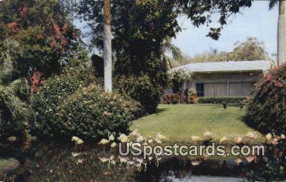 Sarastoa Jungle Garden - Sarasota, Florida FL Postcard