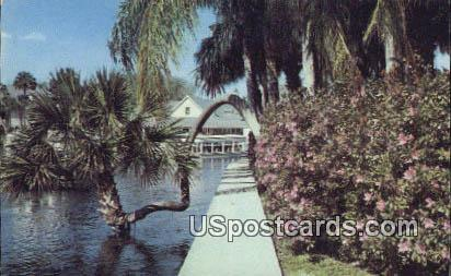 Nature's Underwater Fairyland - Silver Springs, Florida FL Postcard