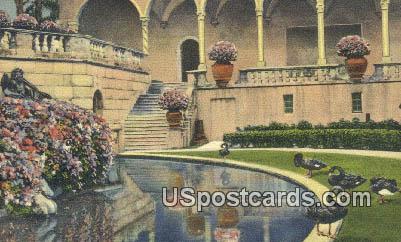 Black Swans, Ringling Art Museum - Sarasota, Florida FL Postcard