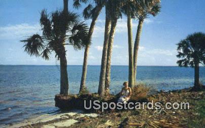 Indian River, FL Postcard     ;     Indian River, Florida