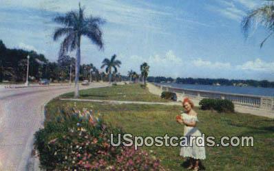 Tampa, FL Postcard     ;     Tampa, Florida