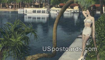 Honeymoon, Lucky Tree - Silver Springs, Florida FL Postcard