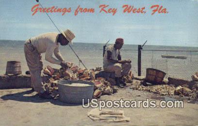 Key West, Florida Postcard     ;     Key West, FL