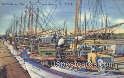 Sponge Fleet in Harbor - Tarpon Springs, Florida FL Postcard