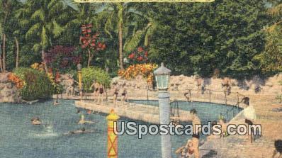 Venetian Pool - Coral Gables, Florida FL Postcard