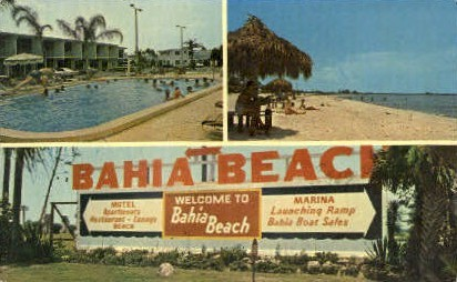 Quality Motel - Ruskin, Florida FL Postcard