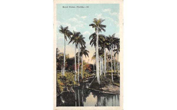 Royal Palms Royal Palm Beach, Florida Postcard