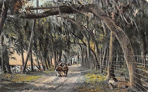 Old South Drive Rockledge, Florida Postcard