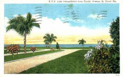 Lake Tohopekaliga - St Cloud, Florida FL Postcard