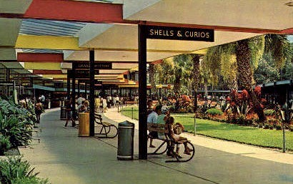 Promenade - Silver Springs, Florida FL Postcard