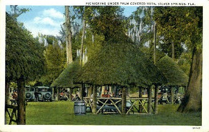 Palm Covered Huts - Silver Springs, Florida FL Postcard