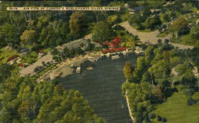 Aerial View - Silver Springs, Florida FL Postcard