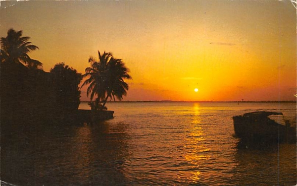 Flordia Sunset Florida Postcard
