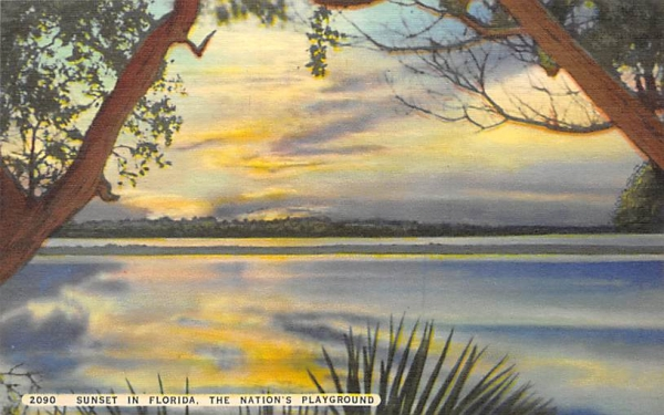 Sunset in Florida, The Nation's Playground Postcard